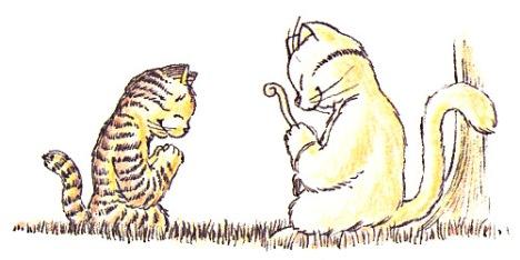 zen pour chats ch gaudin_35_0013